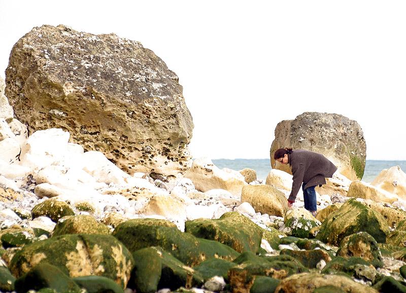 Plage de rochers à yport