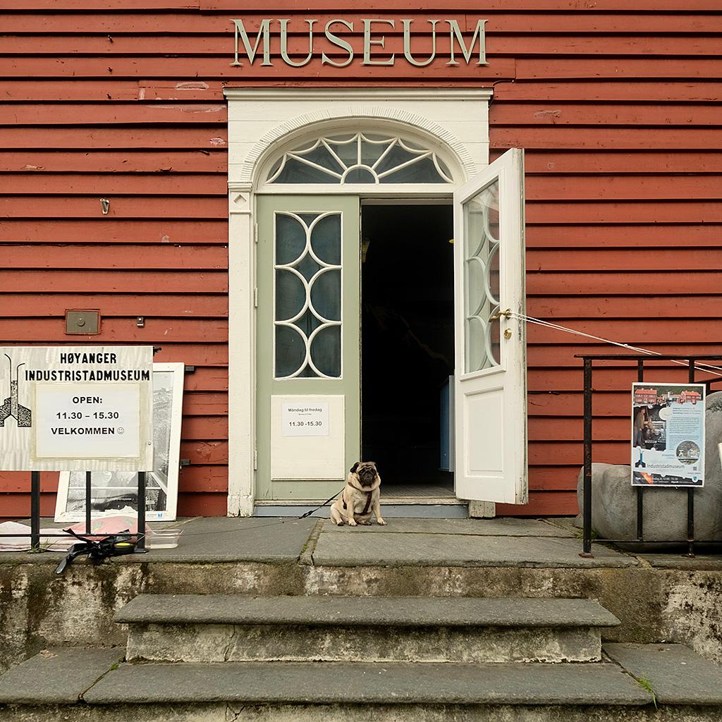 Gardien du Museum de Hoyanger (malheureusement pas eu le temps de visiter le musée)